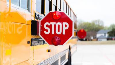 Florida girl trying to get to school bus injured in hit-and-run, police say