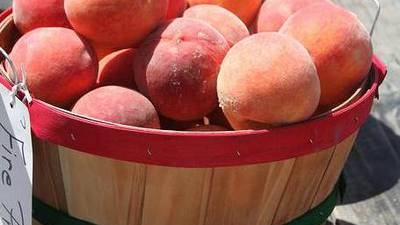 Businesses gearing up for Porter Peach Festival after pandemic cancels previous one