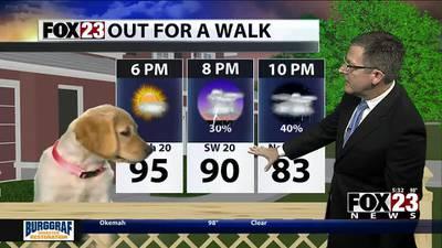 VIDEO: Monday Night Forecast