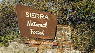Family found dead on remote hiking trail died of hyperthermia, probable dehydration